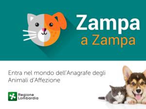 zampa_img_post_2-kvje-u43230494306389m0c-593x443innovazione-web