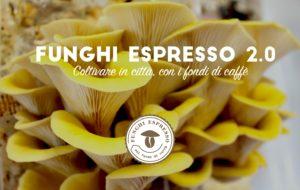 1455894403057145-funghi-espresso