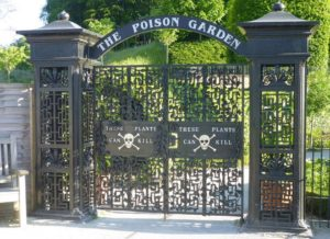 poison-garden-jpg-crop_-article920-large