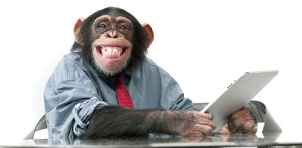 social-monkey